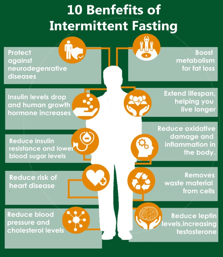 intermittent fasting my experience part 2 the fitness